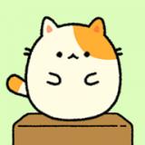 休闲布尼猫